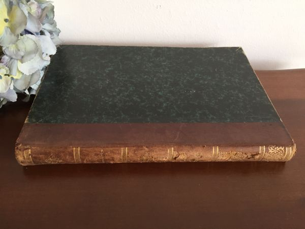 Antique French Book of Illustrated Stories 1896 - 1898 - a627 View5